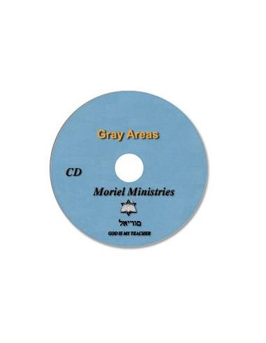 Gray Areas  - CDJP0293