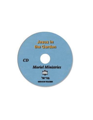 Jesus in the Garden - CDJP0030