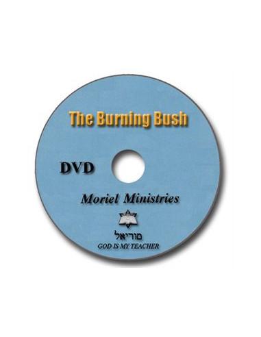 Burning Bush, The - DVDJP0006